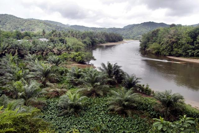 Into the wild: Subayang River, which parts the Bukit Rimbang Bukit Baling Wildlife Sanctuary, has seen numerous conflicts of interests between forest administrators and local stakeholders. (The Jakarta Post/Tarko Sudiarno)