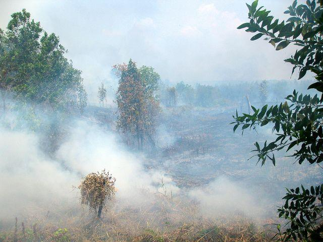 Fire in Central Kalimantan, Indonesia. Photo by Rini Sulaiman/ Norwegian Embassy for Center for International Forestry Research (CIFOR)
