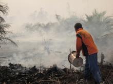 Petugas berupaya memadamkan api di Riau. Kredit foto: Julius Lawalata/WRI Indonesia