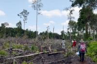 Community groups visit a site of tree clearing in Riau, Indonesia. Flickr/WRI