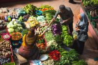 Getting vegetables from the local market can reduce individual emission. Photo credit: Alex Hudson/Unsplash