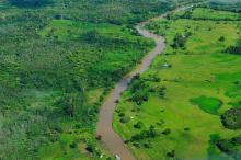 Tim FORMA, yang memulai Centre for Global Development dan pindah ke Lab Data WRI, terinspirasi dengan sistem pengawasan hutan DETER dan SAD yang mengawasi hutan Amazon Brazil. Sumber Foto: CIFOR/Flickr 2011