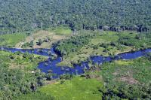 Apa yang dapat dipelajari oleh inisiatif big data lainnya, yang bergerak untuk mengatasi perubahan iklim, dari Global Forest Watch? Sumber Foto: CIAT/Flickr
