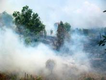 Kebakaran di Palangkaraya, Kalimantan Tengah, 2011. Sumber foto: Rini Sulaiman/Kedutaan Besar Norwegia